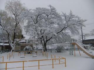 糠田児童公園の雪_01_2010-12-31