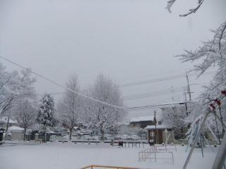 糠田児童公園の雪_03_2010-12-31