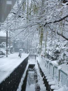 糠田児童公園の雪_06_2010-12-31