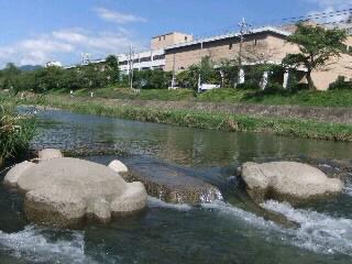 飛び石_2010-09-17