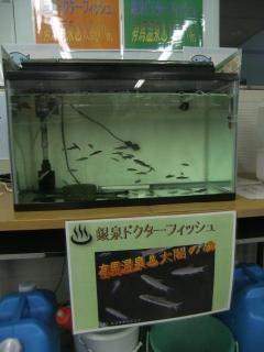 谷上駅_05_2010-01-12