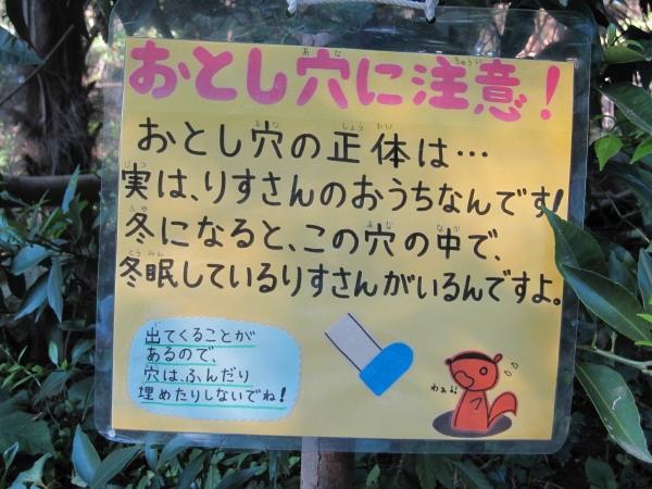 20101013IMG_0077.jpg