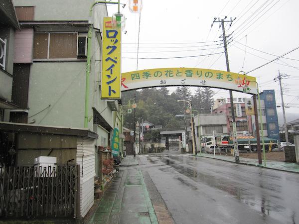 2011.02.11IMG_2581[1]