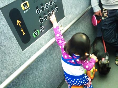 エレベーターのボタンも乗ったままw