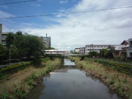 野川 車橋の風景①