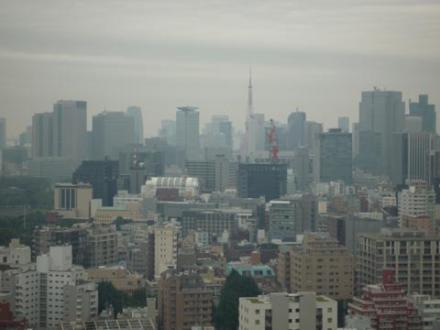 法政大学から見た東京タワー