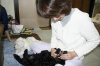 2012-3-22 ワンコ9匹とワンコママ4人 9