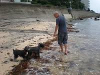 私の台風4号の波 2012-6-17 12