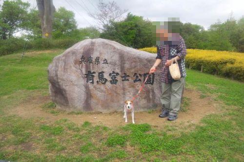 DPP_01_20120509230322.jpg