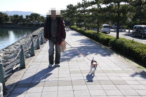 DPP_01_20121209224729.jpg