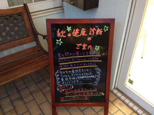 DPP_08_20121004220615.jpg