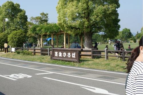 DPP_21_20120603220410.jpg