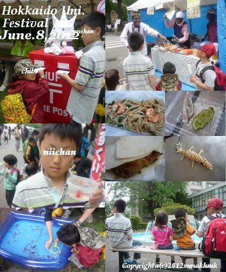 20120608Hokkaido Uni blog