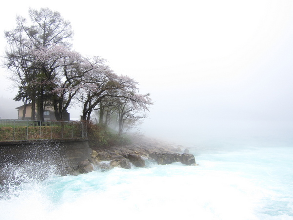 田沢湖発電所放水口付近