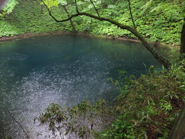 白神山地・十二湖の青池