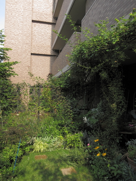 横浜の庭2