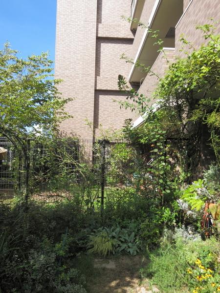 横浜の庭1
