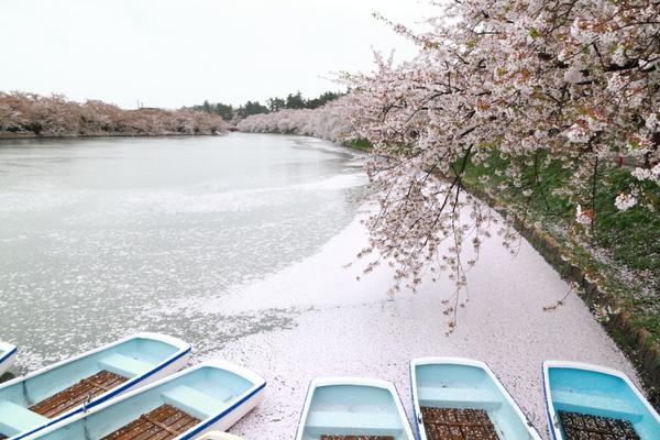 弘前城公園9