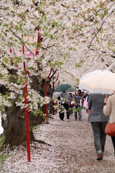 弘前城公園10