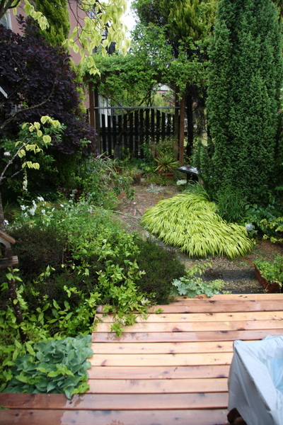 penpenさん宅の庭1