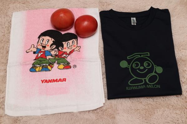 岩沼メロンTシャツ1