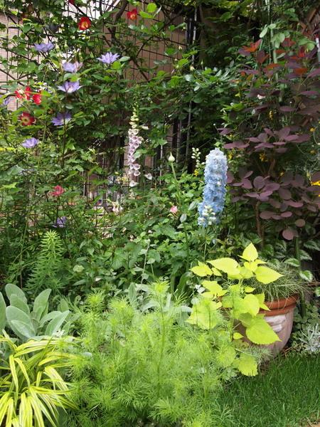 5月9日の庭 5