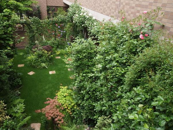 階段からの庭の全景