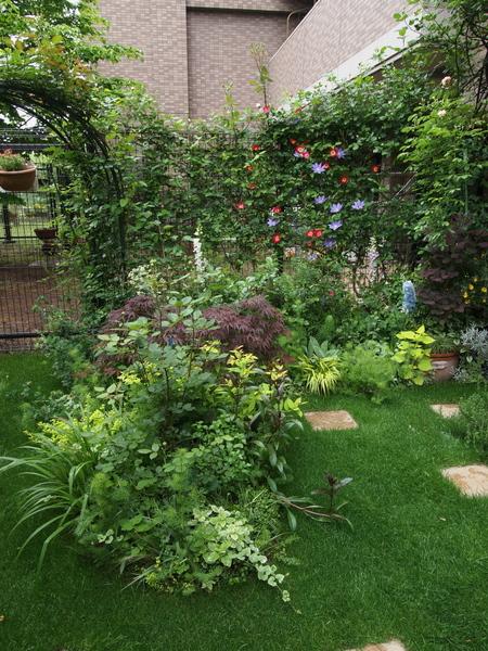 5月9日の庭 1