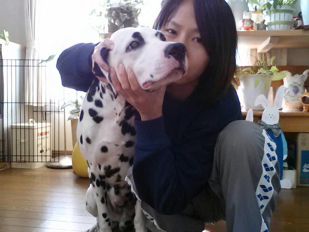 コピー ~ 犬