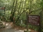 菊池渓谷遊歩道