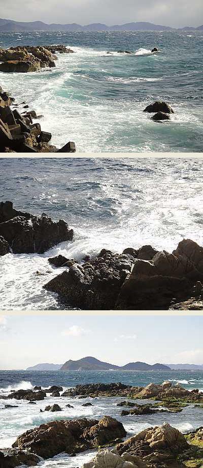 image3_20110131065026.jpg
