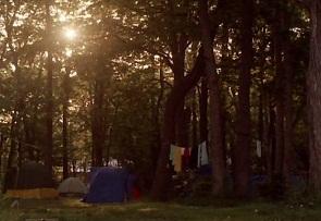 大沼キャンプ場