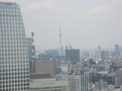譚ア莠ャ繧ソ繝ッ繝シ2_convert_20120530222615