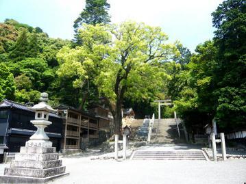 多度神社1
