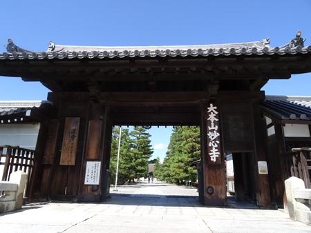 92妙心寺