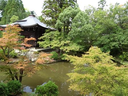 8清涼寺2