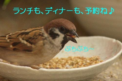100_20141013185745897.jpg