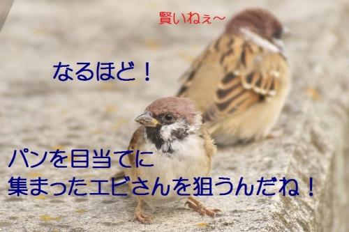 100_20141019173340490.jpg