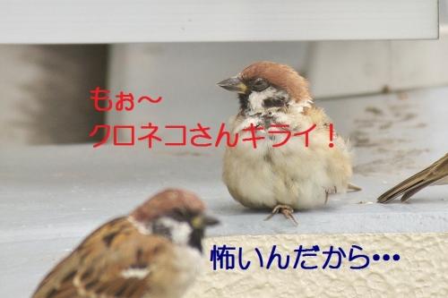 105_20141007184311136.jpg