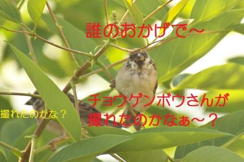 120_2014100219172206d.jpg