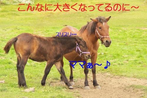 180_20140920203518ad3.jpg