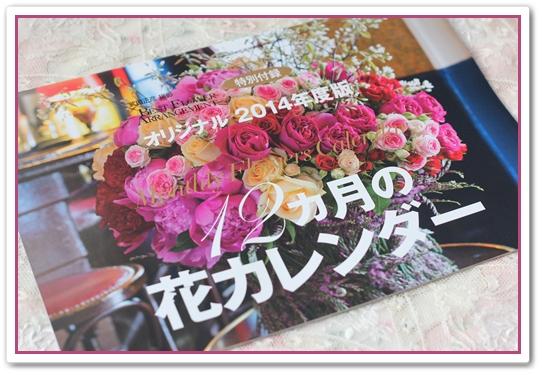IMG_4681-a.jpg
