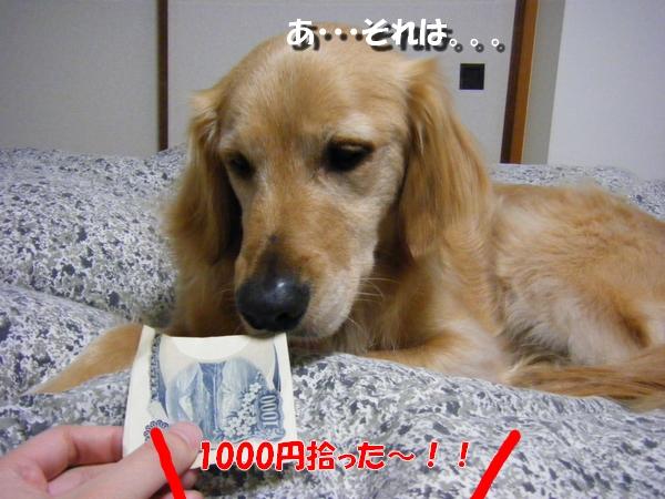 DSCF1003_20110413235123.jpg
