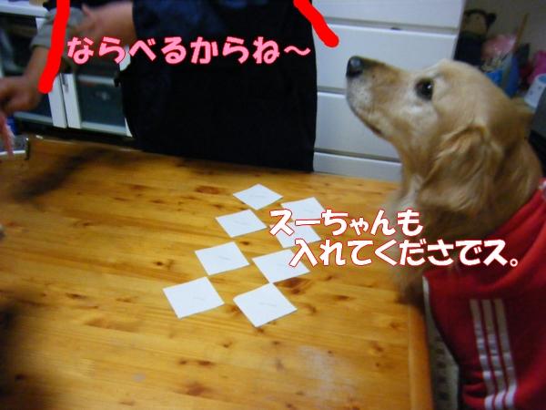 DSCF1007_20111226225435.jpg