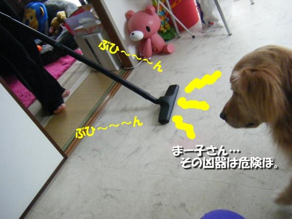 DSCF5009_20110502014812.jpg