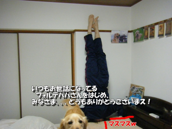 DSCF5012_20110503010143.jpg