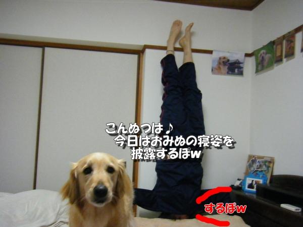 DSCF5014_20110503010142.jpg