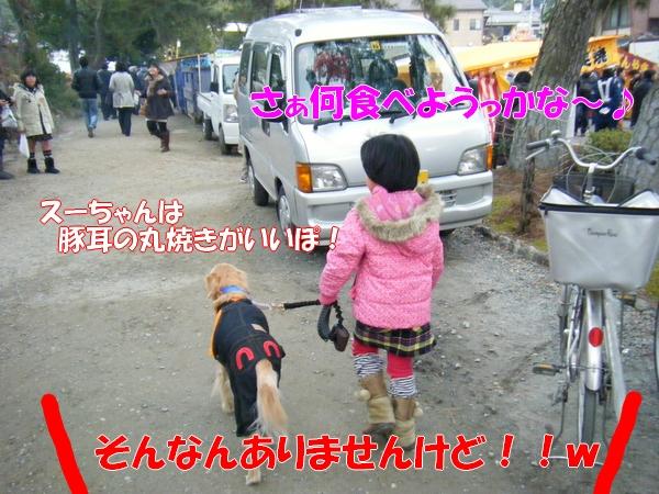 DSCF5019_20120112002759.jpg