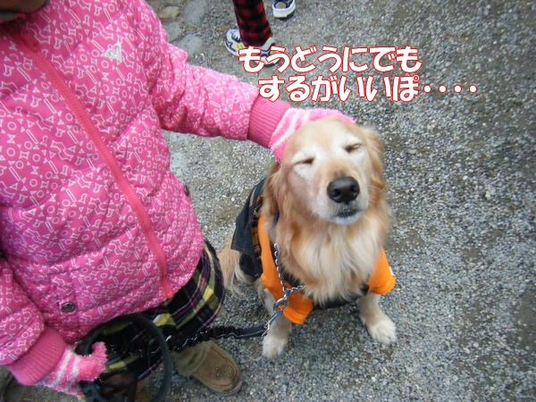 DSCF5024_20120112002758.jpg