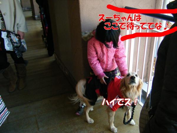DSCF5072_20120113233252.jpg